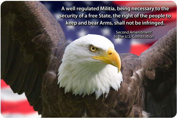 Image result for second amendment rights images
