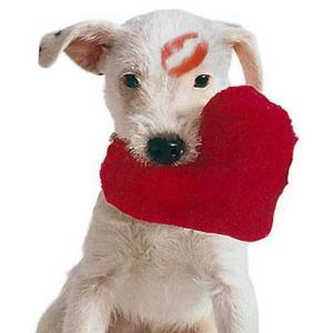 heart_puppy