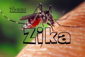 zika-new